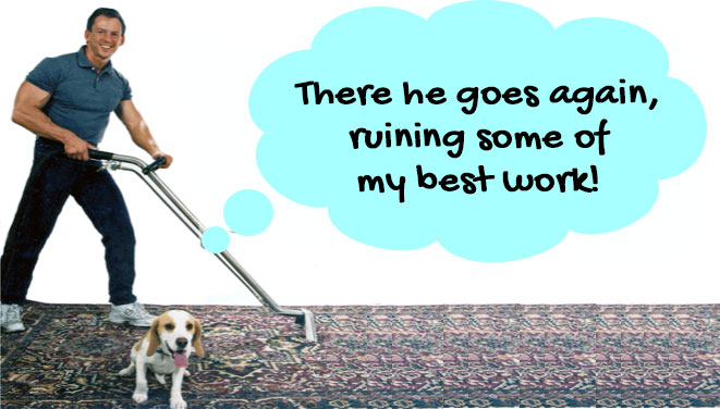 Carpet Cleaning in Tucson, Marana and Oro Valley
